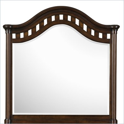 Magnussen Taylor Wood Shaped Mirror in Espresso Finish