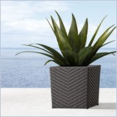 Zuo Cancun Short Planter 