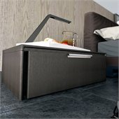 Modloft Thompson Nightstand in Wenge