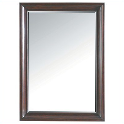 Stanley Furniture Transitional Landscape Mirror Polished in Sable