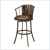 Pastel Furniture Lucien 26 Swivel Counter Stool in Ford Brown