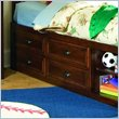 ADD TO YOUR SET: Lea Deer Run Captain's Bed Box