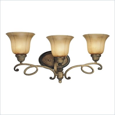 Minka Lighting La Cecilia 3 Light Bath Minka Lavery in Patina Iron with Spumanti Lace Glass
