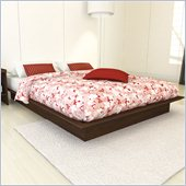 Sonax Contemporary Queen Platform Bed in Urban Maple