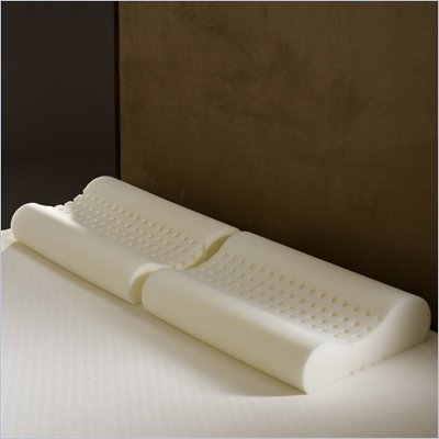 Comfort Magic Personal Anti-snore Memory Foam Contour Pillows (Set of 2)