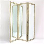 Wayborn Mirror w/ Frame Full Size Dressing Room Divider in Silver