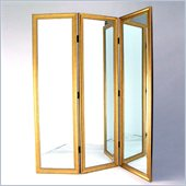 Wayborn Mirror w/ Frame Full Size Dressing Room Divider in Gold