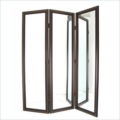 Wayborn Mirror w/ Frame Full Size Dressing Room Divider in Brown/Gold