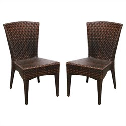 Safavieh New Castle Wicker Side Chair in Brown (Set Of 2)