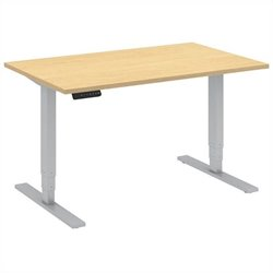 48x30 Height Adjustable Computer Desk