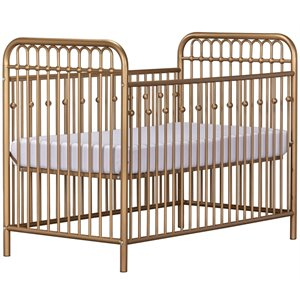 Little Seeds Monarch Hill Ivy Metal Adjustable Crib in Go...