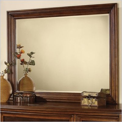 Wynwood Brendon Landscape Mirror in Hazelnut and Cabernet Finish