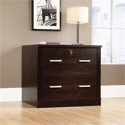 Sauder Office Port 2 Drawer File Cabinet in Dark Alder