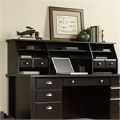 Sauder Shoal Creek Hutch/Organizer in Jamocha Wood