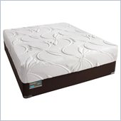 Simmons BeautyRest ComforPedic Alive Luxury Firm Mattress Set