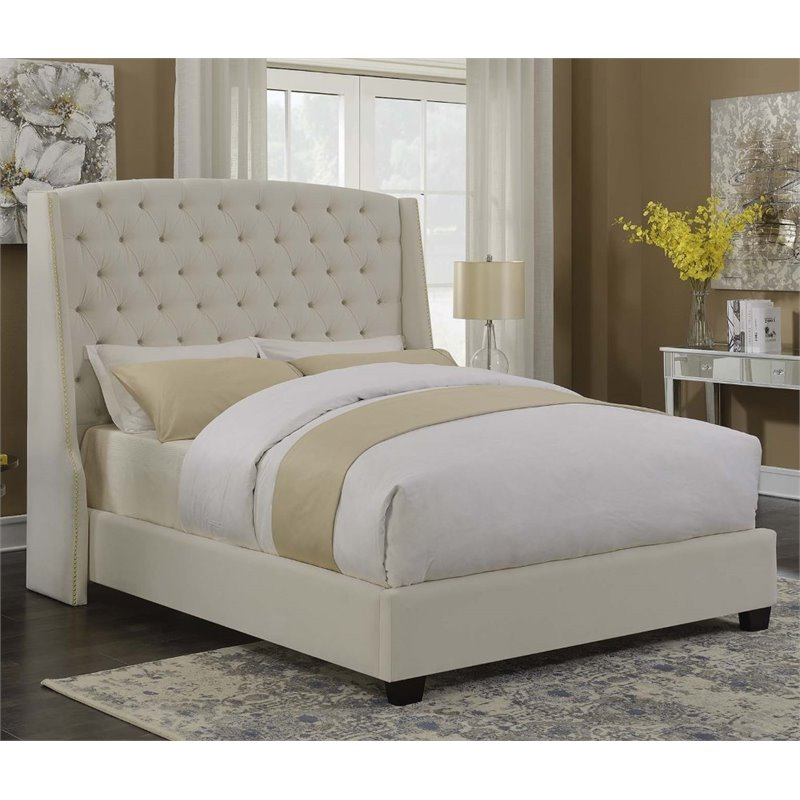 Coaster Upholstered Queen Bed in Champagne