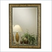 Coaster Square Wall Mirror in Wood and Gold