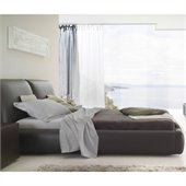Rossetto Pavo Platform Bed in Brown Finish