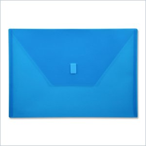 Lion Design-R-Line Poly Envelope