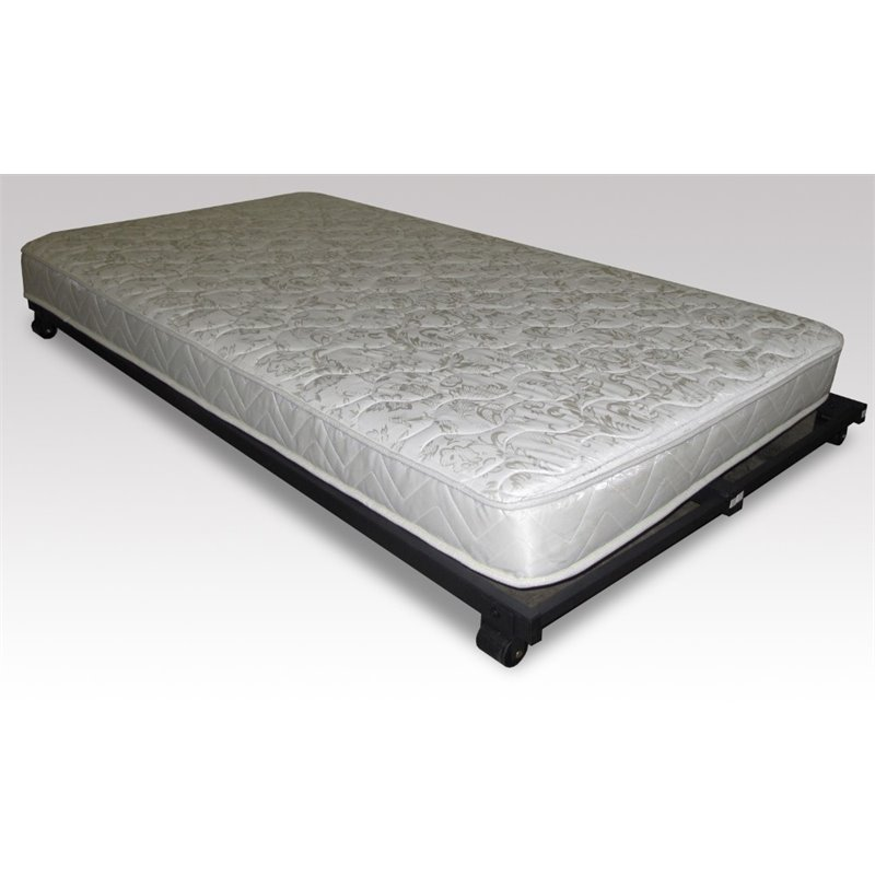 Hillsdale 5 High Density Foam Rolled Twin Mattress