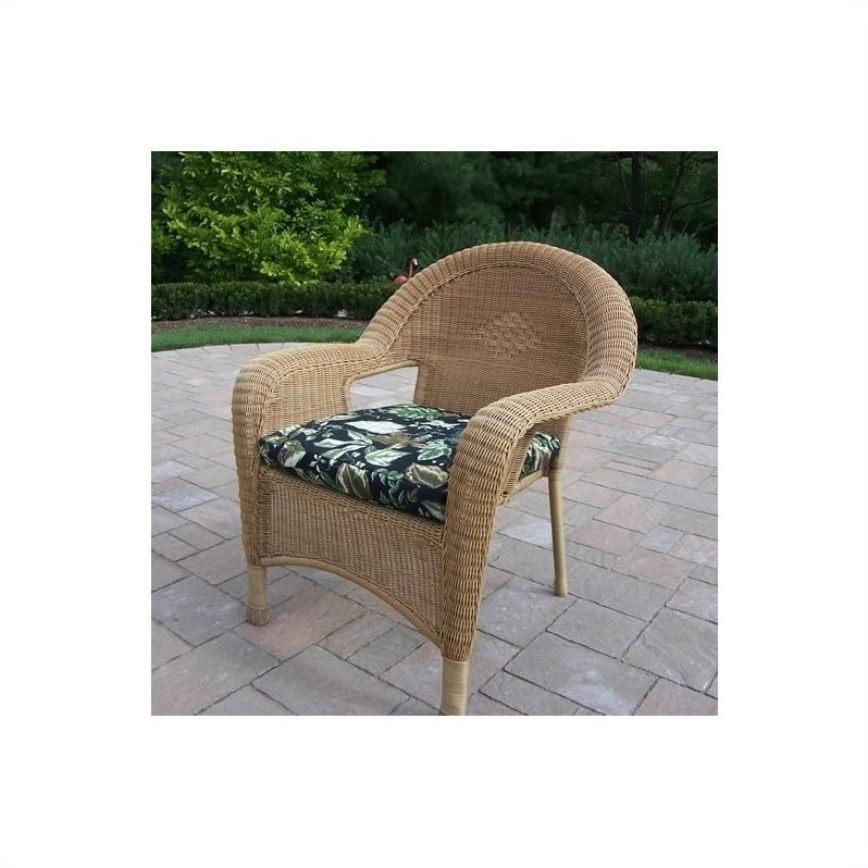 Resin Wicker Arm Chair with Cushion in Honey (Set of 2)