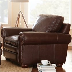 Steve Silver Company Yosemite Leather Club Chair in Brown