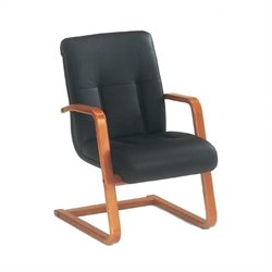 DMi Belmont Executive Leather Guest Chair