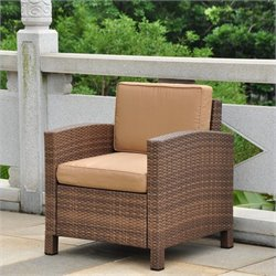 Outdoor Patio Chair in Antique Brown and Coffee