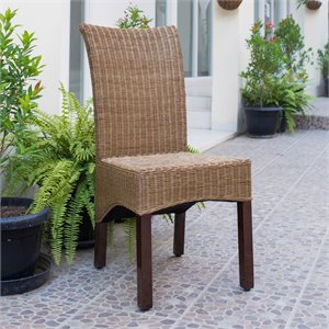 Campbell Rattan Wicker Stained Dining Chair (Set of 2)
