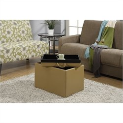Convenience Concepts Designs4Comfort Accent Storage Ottoman - Tan