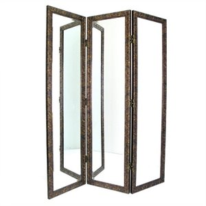 Mirrored Room Divider in Brown and Gold