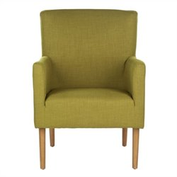 Safavieh Darryl Fabric Arm Chair in Green