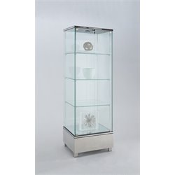 Chintaly Glass Curio in Stainless Steel