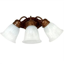 Yosemite Home Decor 3 Lights Vanity Lighting in Dark Brown Frame