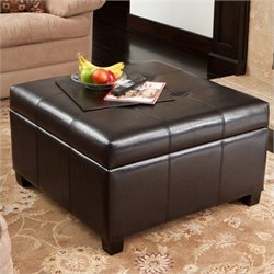 Noble House Mendicino Storage Ottoman in Espresso