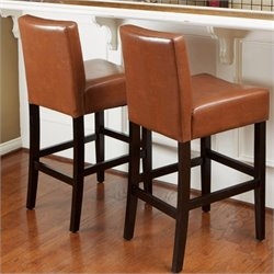 Noble House Rodriguez Bar Stools in Hazelnut (Set of 2)