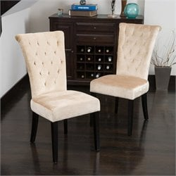 Noble House Vatican Dining Chair in Champagne (Set of 2)