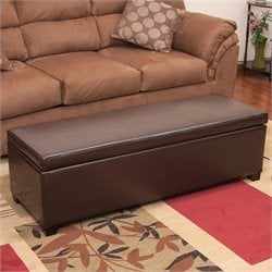 Noble House Cara Leather Storage Ottoman in Brown