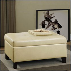 Dorel Asia Living Rectangular Faux Leather Storage Ottoman in Beige
