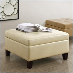 Dorel Asia Living Square Faux Leather Storage in Beige