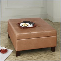 Dorel Asia Living Square Faux Leather Storage in Camel