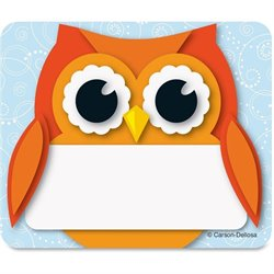 Carson Colorful Owl Name Tags