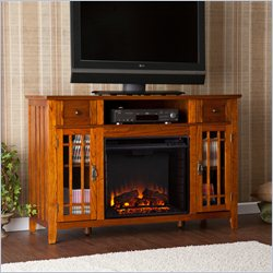 Southern Enterprises Salinas Electric Media Fireplace in Mission Oak