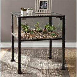 Southern Enterprises Terrarium Glass Display End Table in Black