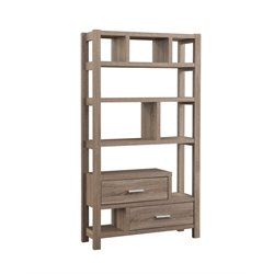 Furniture of America Royce Modern Bookcase in Light Oak