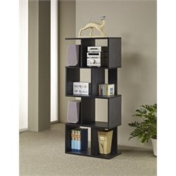 Furniture of America Alden Modern Bookcase in Black