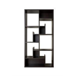 Furniture of America Gavin Modern Geometric Bookcase in Black