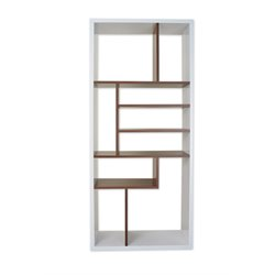 Furniture of America Ashwin Modern Bookcase in Walnut and White