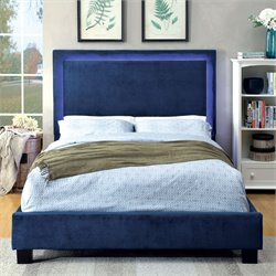 Furniture of America Luna Queen LED Bed in Navy