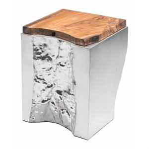 Brika Home End Table in Natural and Stainless Steel